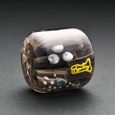 粘菌とトビムシの玉