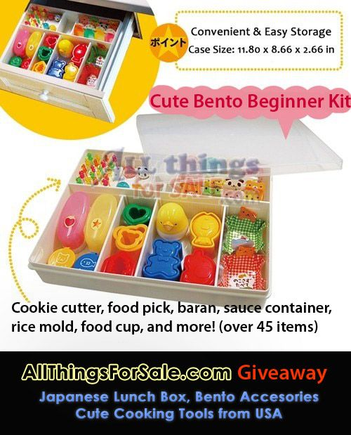 bento beginner kit  sc 1 st  Pinterest & 173 best BENTO STORE images on Pinterest | Bento store Bento box ... Aboutintivar.Com