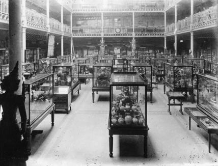 Chock a block full, note tiers, railing at top of first level - Pitt Rivers Museum Court, about 1895