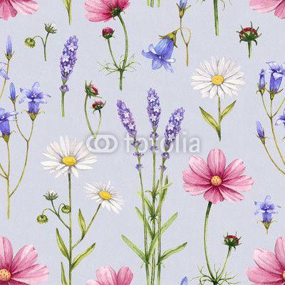 Fototapeta dzikie kwiaty ilustracji. akwarela bez szwu deseń - lavandula • PIXERS.pl