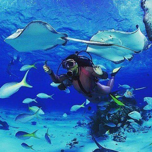 #hello #Maldives #travel #unique #experience #summer #paradise #beach #relax #stunning #beauty #lagoon #escape #ocean #exotic #seaside #holiday #mood #joy #island  #fun #sun #amazing #ff #fff #follow #your #dream #follow_your_dream #by_jo by hello.maldives