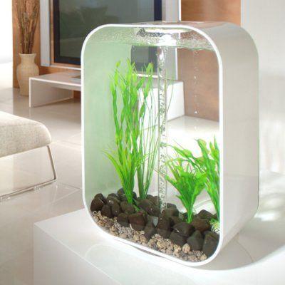 BiOrb fish tank    http://www.biorbtankreviews.com/wp-content/uploads/2d35dca10d08675.jpg