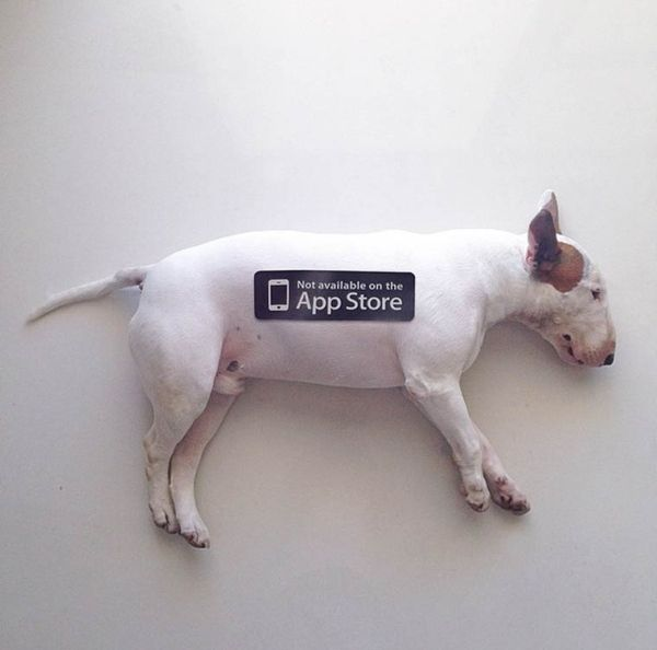 dog-art-1