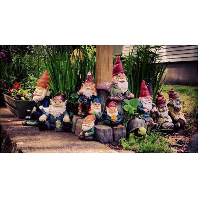 Gnombies Garden: Gnomes And Rocks