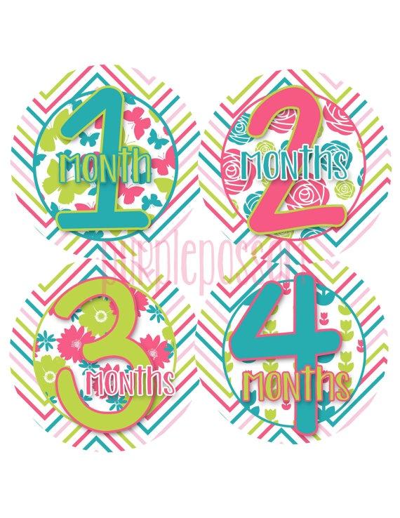 Monthly Onesie Stickers Waterproof  StickersBaby by PurplePossom, $9.00
