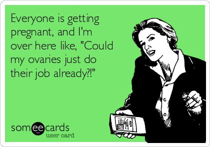 Seriously do your job!!