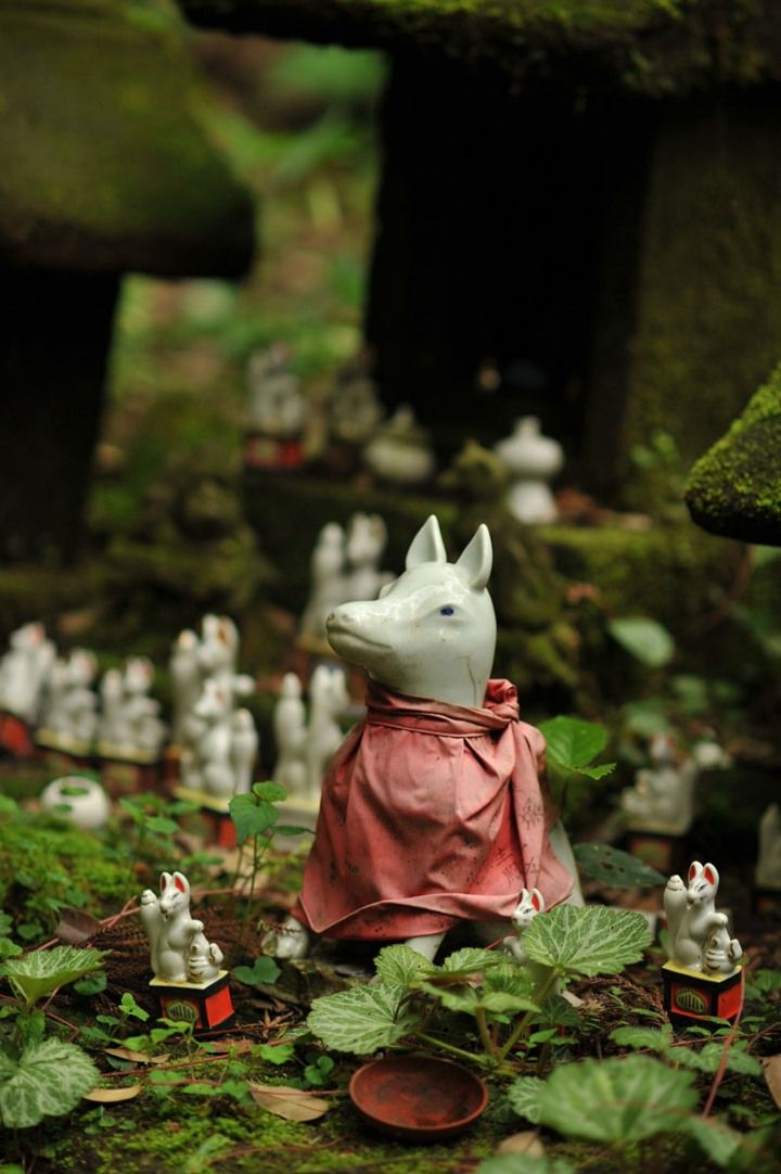 Sasuke Inari Shrine - A Leash of Foxes