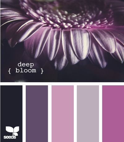 Deep Bloom | Color Palette | Paint Inspiration | Paint Colors | Paint Palette | Color | Design Inspiration