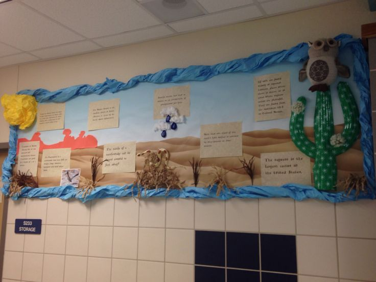 My desert bulletin board display. I posted desert fun facts throughout the display.
