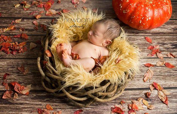 Le newborn posing vous connaissez ? Aujourd'hui, vous êtes de plus en plus nombreux à choisir votre photographe de naissance avant...