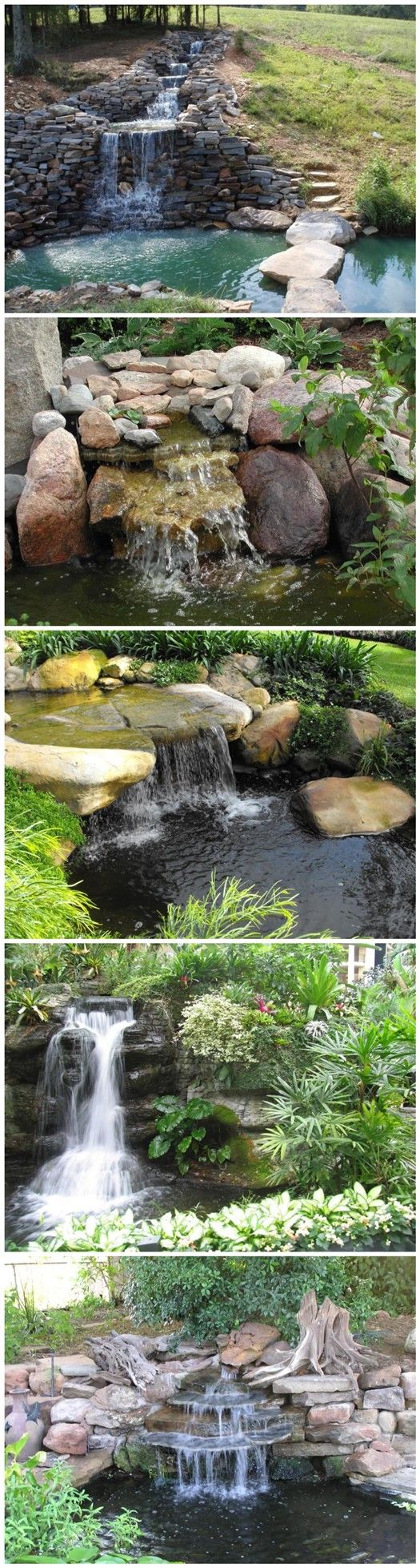 how to get a pond ready for fish