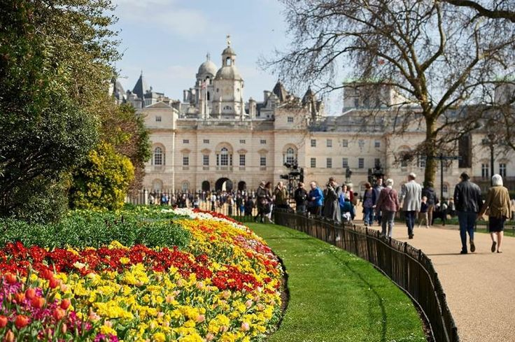 Flowers in bloom are pictured near Horse Guards Parade in St James's Park in central London