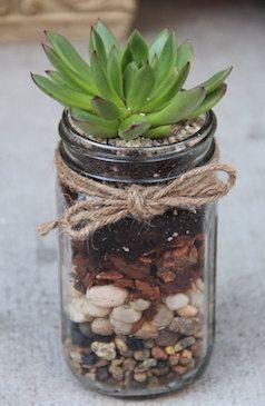 Cute mason jar plant holder