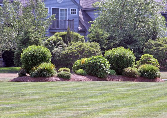 Residential landscaping berms and mounds there is for Berm garden designs