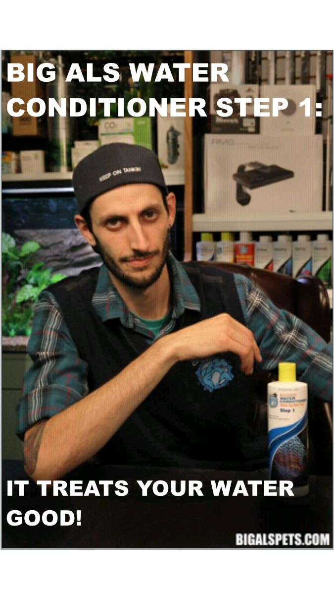He is... the most interesting fishkeeper in the world. | REEF2REEF Saltwater and…