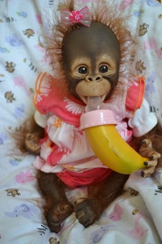 Orangutan baby another doll....love the banana bottle!!