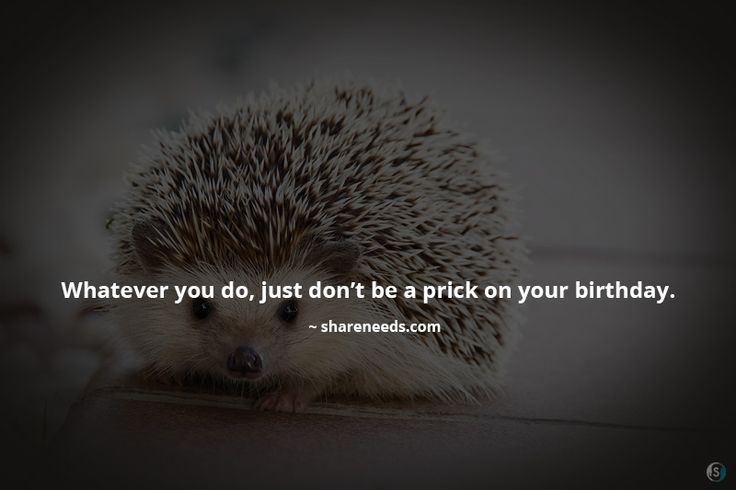 Whatever you do, just don't be a prick on your birthday.