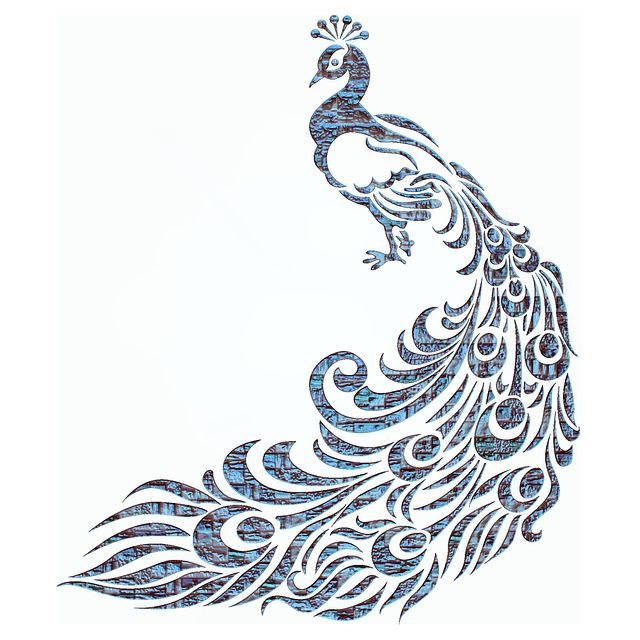 peacock - Google Search