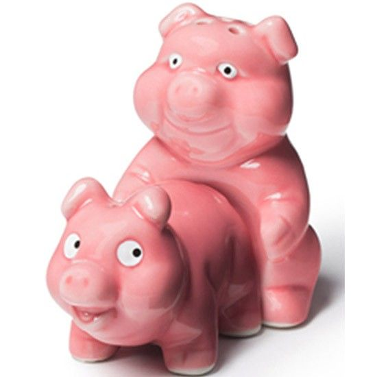 BigMouth Inc Naughty Pigs Salt And Pepper Shaker Set   Cool Kitchen Gifts