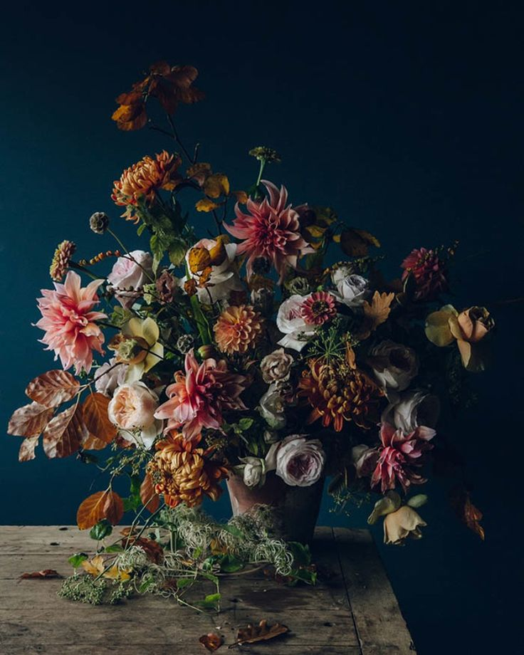 Check this out: Giving Thanks + Autumn Flowers by Swallows & Damsons. https://re.dwnld.me/d7ck3-giving-thanks-autumn-flowers-by-swallows-and-damsons