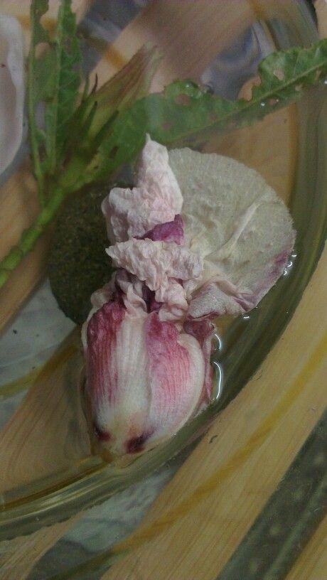 Full bloom inspo