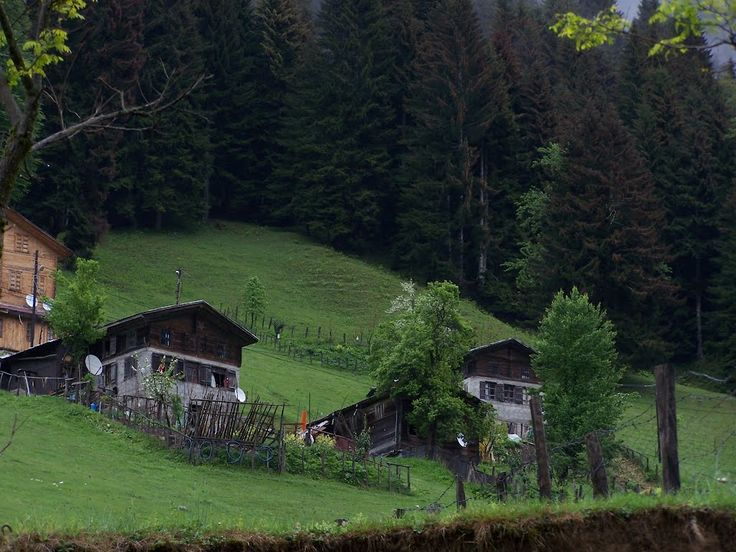 <3 Yayla houses in Ayder-Rize/Turkey