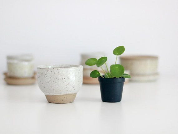 Speckled White Plant Pot With Drainage Holes White Plants Potted Plants Plants