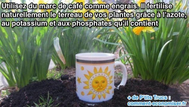 La prochaine fois que vous voulez jeter votre marc de café, pensez plutôt à l'utiliser comme engrais.  Découvrez l'astuce ici : http://www.comment-economiser.fr/le-marc-de-cafe-un-bon-engrais-pour-vos-plantes.html?utm_content=buffercd379&utm_medium=social&utm_source=pinterest.com&utm_campaign=buffer