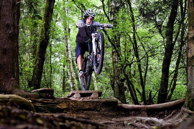 SFU Burnaby Mountain Trails: The Nicole's Loop