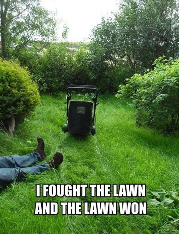 If you feel like this when cutting your grass, maybe you should have us cut