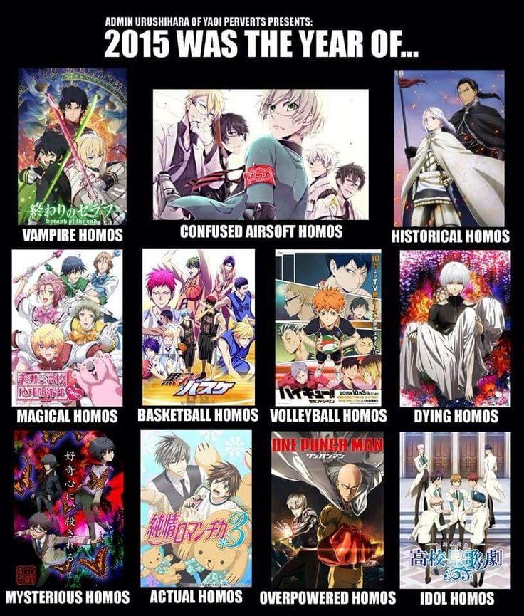 Owari no Seraph, Aoharu x Kikanjuu, Arslan Senki, Binan Koukou Chikyuu Bouei-bu LOVE!, Kuroko no Basket S3, Haikyuu S2, Tokyo Ghoul S2, Ranpo Kitan: Game of Laplace, Junjou Romantica S3, One Punch Man, High School Star Musical || ..a lot of homos in 2015...