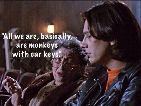 Monkeys with car keys....