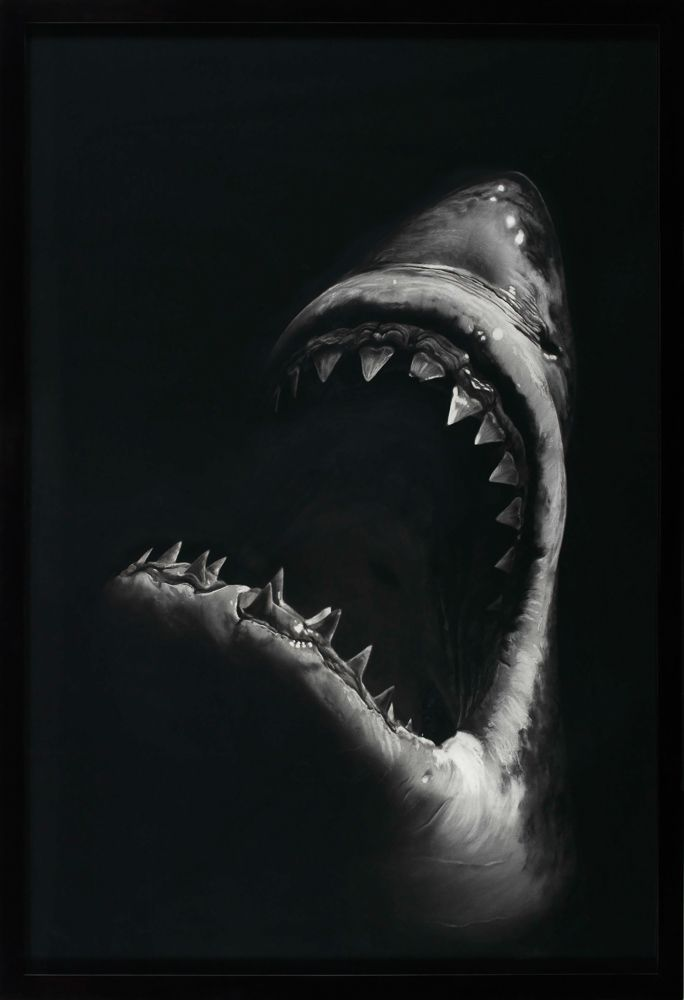 Robert Longo Shark 7, 2008 Kohle auf Papier 234 x 151 cm                                                                                                                                                                                 Mehr