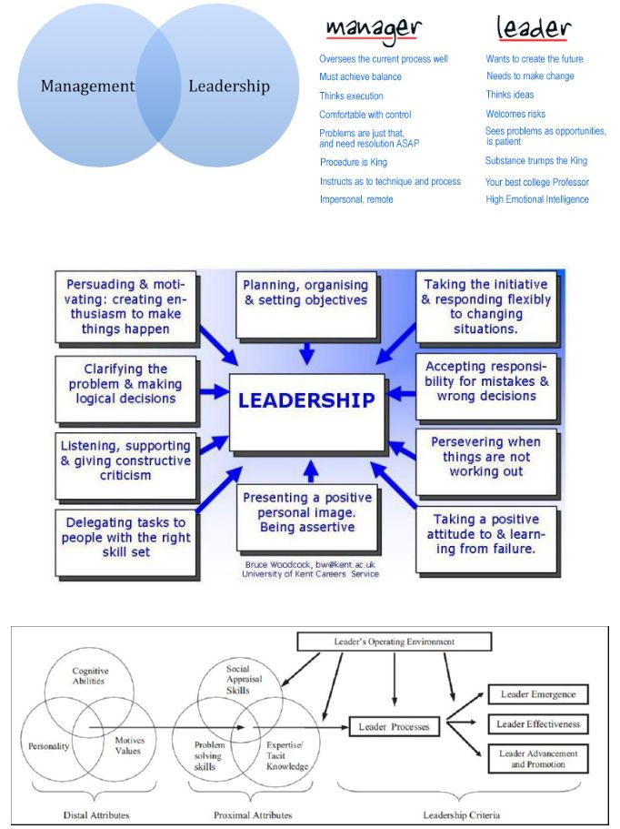 Leadership: Meaning, Characteristics and Functions