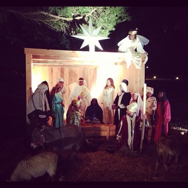 Live nativity scene ideas