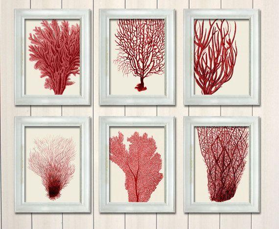 Set of 6 Red Coral Prints - Nautical print sea picture beach decor wall decor marine picture beach house bathroom decor nautical decor on Etsy, $55.00