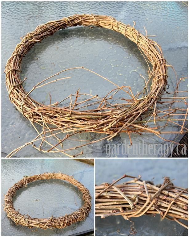 DIY vine wreath from grapevine, virginia creeper, wisteria  (Medium)