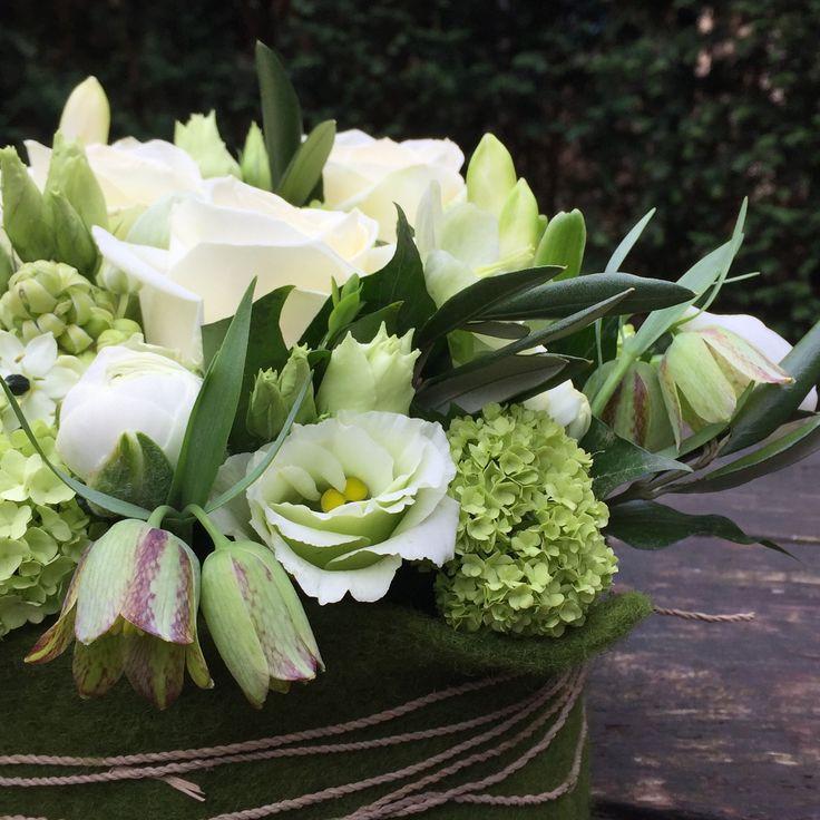 #bloementaart wit #voorjaarsbloemen #blom #wageningen