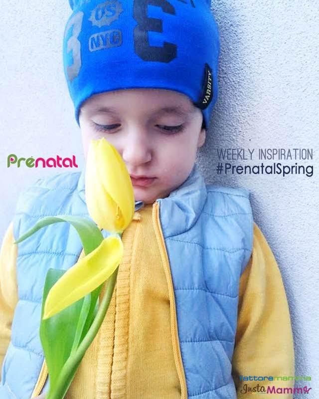 Si è conclusa la Weekly Inspiration Prénatal Spring, tutta dedicata alla meraviglia della primavera. Ecco la selezione delle foto che abbiamo scelto