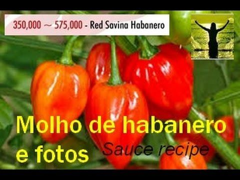 Meu molho de pimenta habanero,forte e saboroso e fotos,pepper sauce