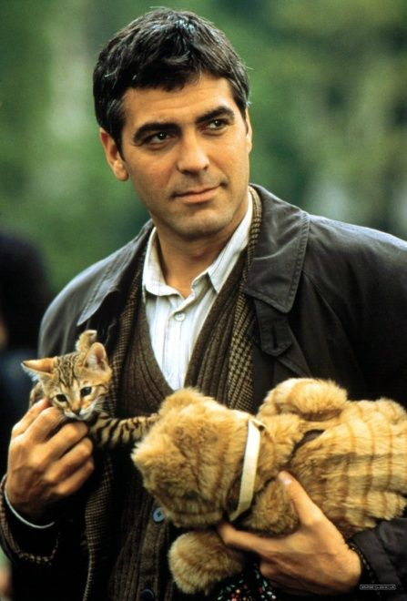 George Clooney with Brown Mackerel Tabby Kitten