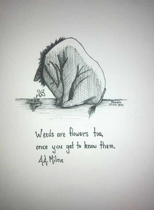 Awwwwwww Eeyore xxxx Weeds are flowers too, once you get to know them. -Eeyore (A.A. Milne)