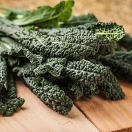 Kale Seeds | Grow Vitamin Rich Kale at Home - EdenBrothers.com