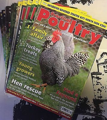 Practical Poultry Magazine-Chicken-Ducks-Game-Goose-Quail-Rabbits-#82 to 93 2011 Pet Supplies:Poultry & Waterfowl #forcharity