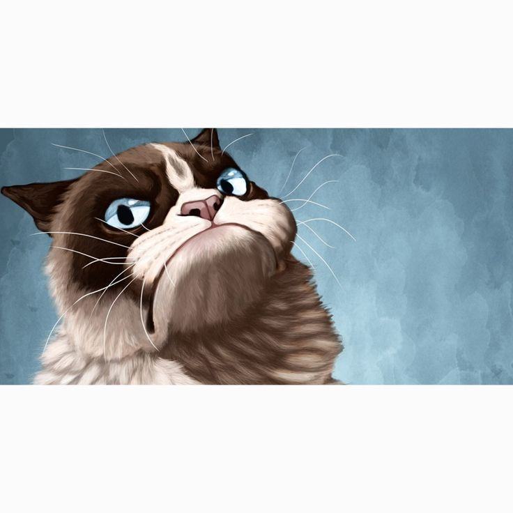 grumpy cat wedding invitations%0A       cm Grumpy Cat Bamboo Fiber Bath Towel Shower Travel Swim Spa Sports  GYM Beach Towels For Kids Adults Drap De Plage   Towels   Pinterest   Beach  towel