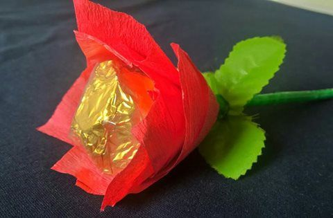 Beautiful Chocolate Rose