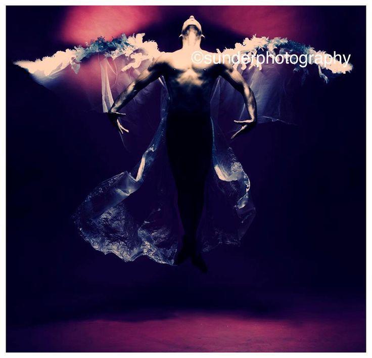 Wings of dance