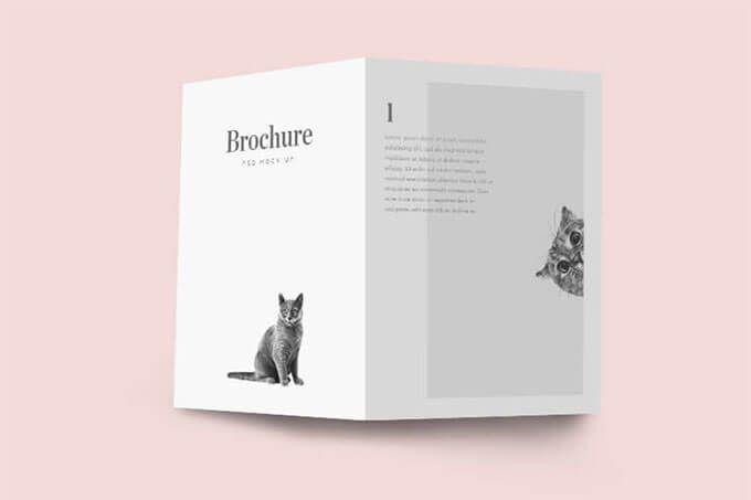 Designlazy-Brochure-978x651