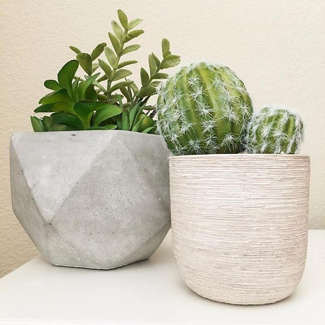 IG @living_los_angeles: home decor, target home decor, faux plants, succulents, cactus, rustic decor, modern decor, decorate, plants
