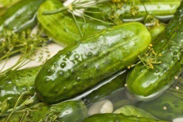 Чудесный рецепт очень вкусных малосольных огурцов | Кулинарные Рецепты